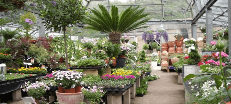Best landscaping companies in sulphur louisiana march 2016 for Choosing plants for landscaping