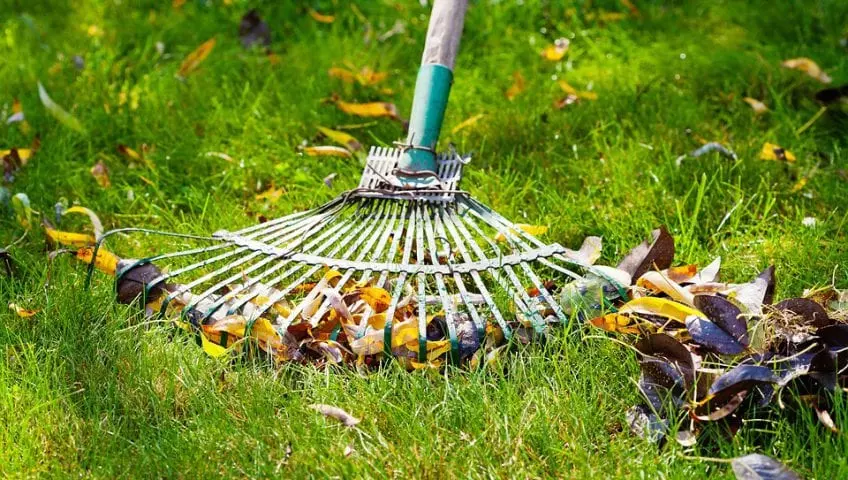 lawn care, lawn service, lawn, landscapes, landscapes installations, landscape maintenance, lawn fertilization, insect interior pest control, weed control, dirt work, irrigation, irrigation and sprinkler repair, lawn solutions