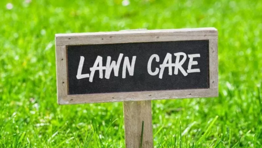 lawn care, lawn service, lawn, landscapes, landscapes installations, landscape maintenance, lawn fertilization, insect interior pest control, weed control, dirt work, irrigation, irrigation and sprinkler repair, lawn solutions, landscape lightning